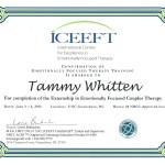 EFT Externship Certificate